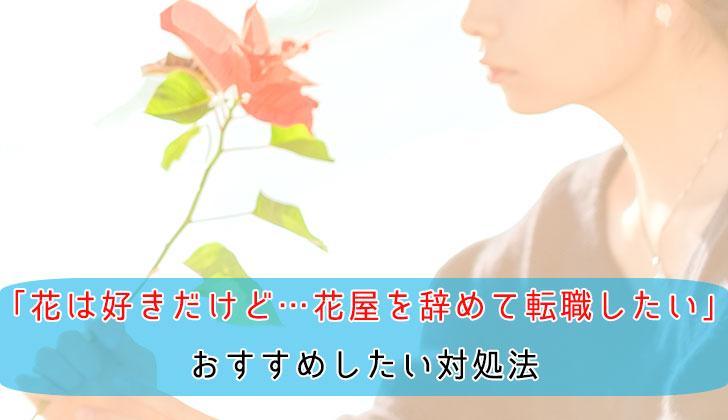 「花は好きだけど…花屋を辞めて転職したい」おすすめしたい対処法の画像